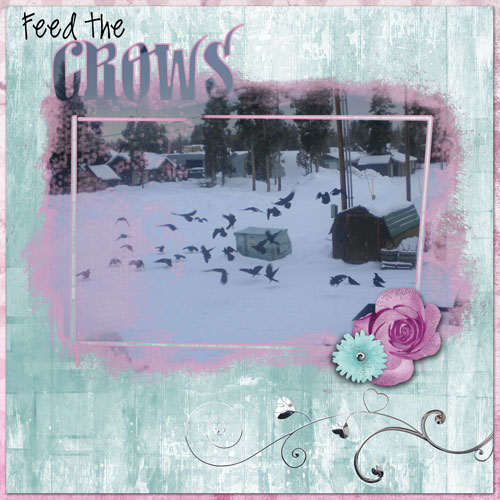 Feed-The-Crows